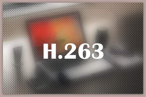 About H.263